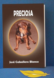 dhar book web Preciosa
